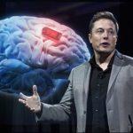 Elon Musk Has Started Up A Brain Electrode Company Called Neuralink